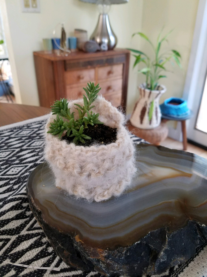 sweaterplant.jpg